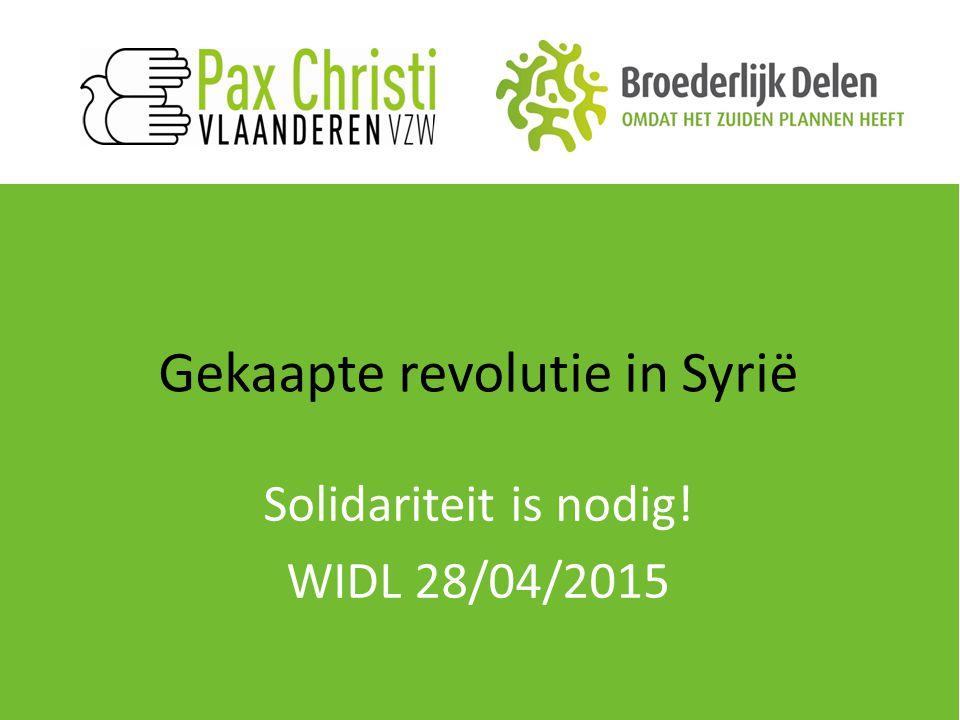 Gekaapte revolutie in Syrië