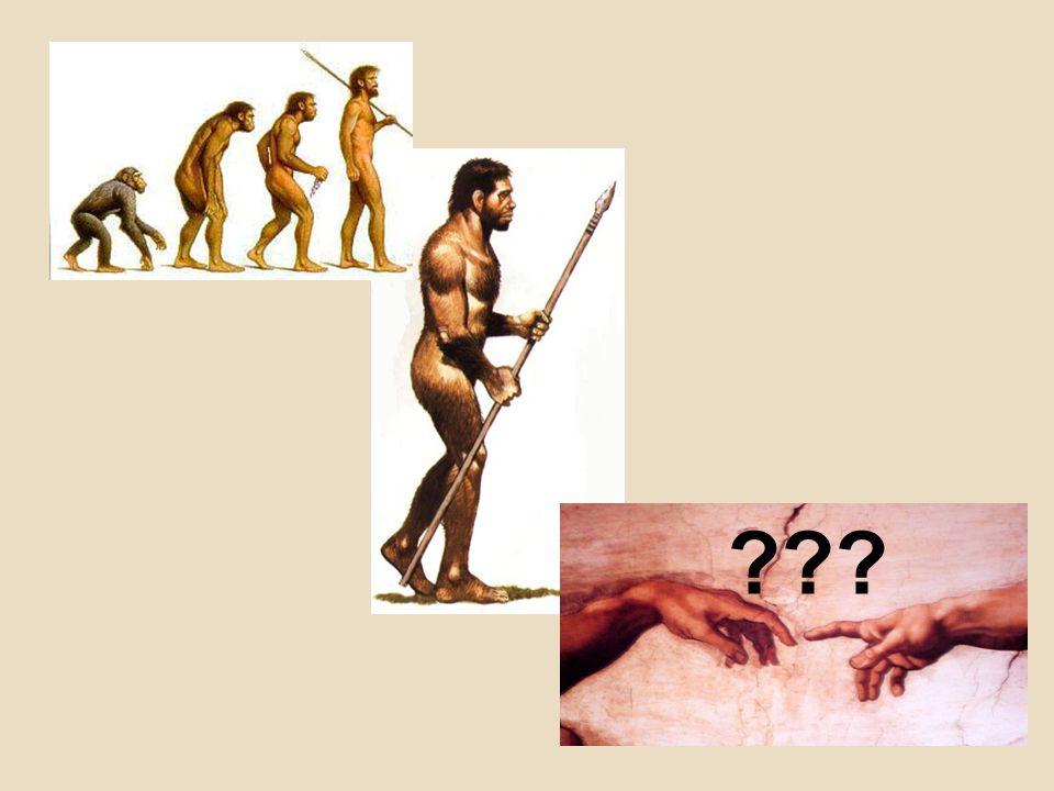 Ontstaan van de mens -> groeit uit tot de 'homo erectus' -> de mens krijgt zijn handen vrij voor