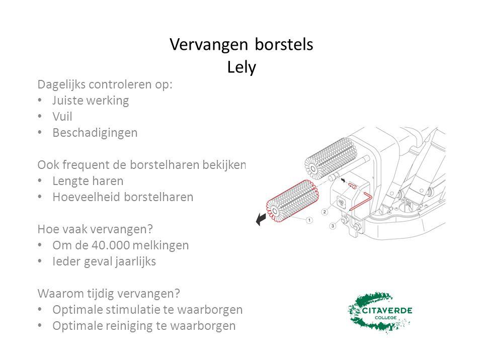 Vervangen borstels Lely