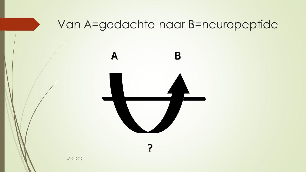 Van A=gedachte naar B=neuropeptide