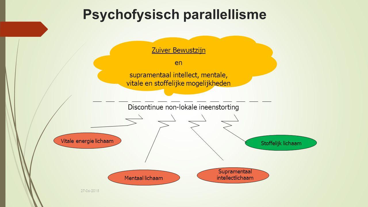 Psychofysisch parallellisme
