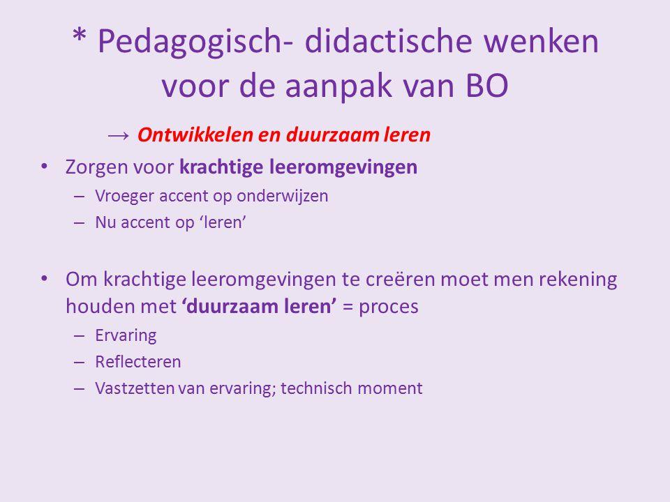 * Pedagogisch- didactische wenken voor de aanpak van BO