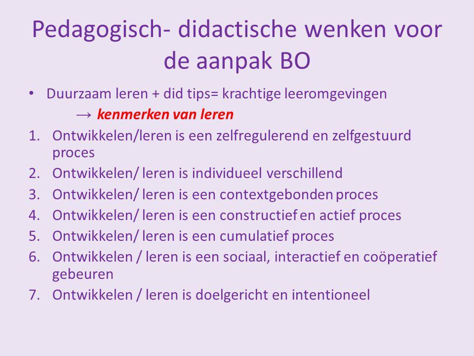 Pedagogisch- didactische wenken voor de aanpak BO