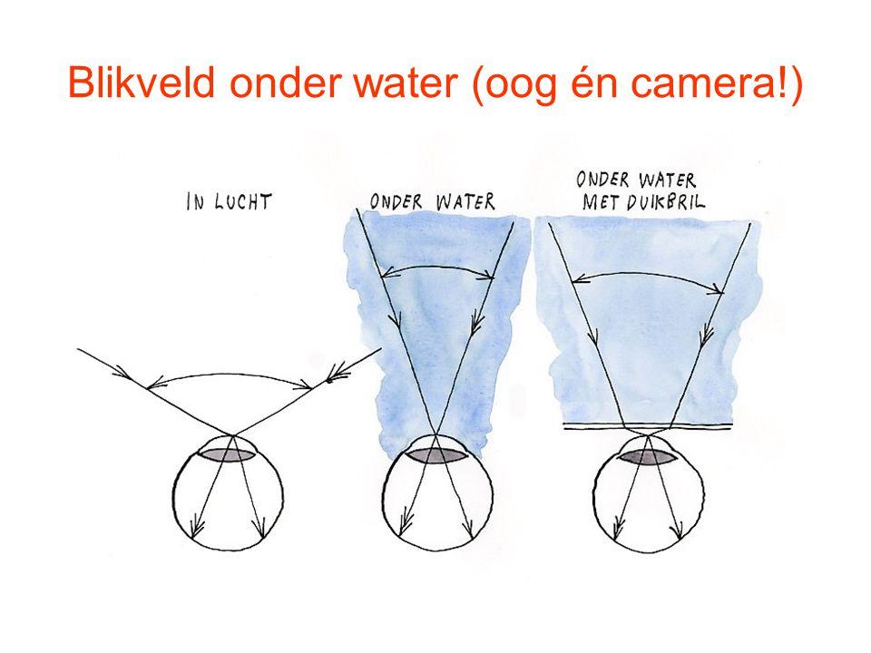 Blikveld onder water (oog én camera!)