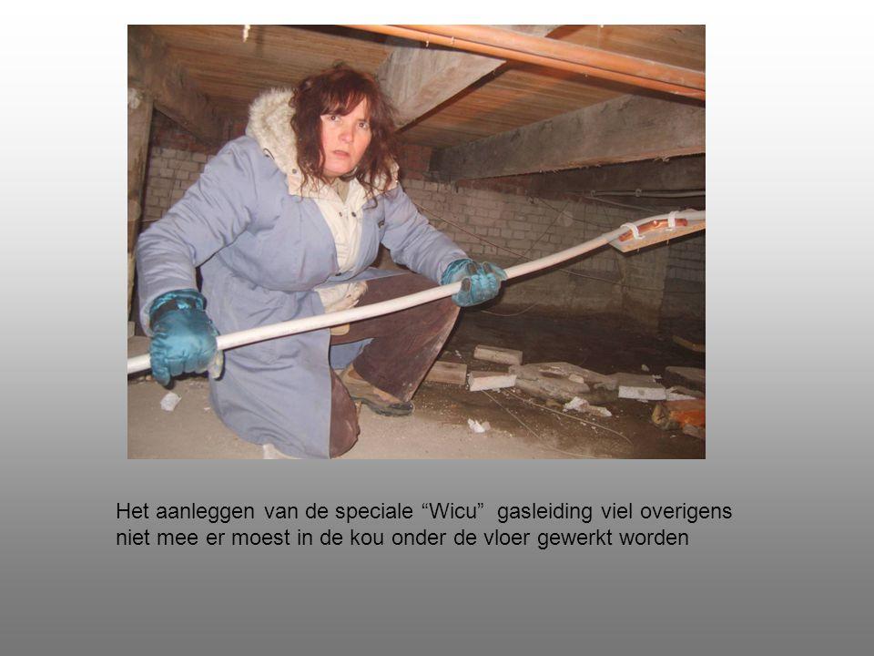 Het aanleggen van de speciale Wicu gasleiding viel overigens