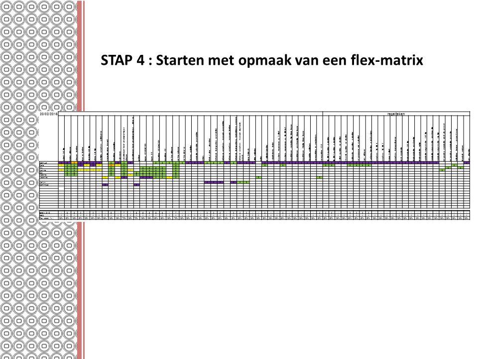 STAP 4 : Starten met opmaak van een flex-matrix