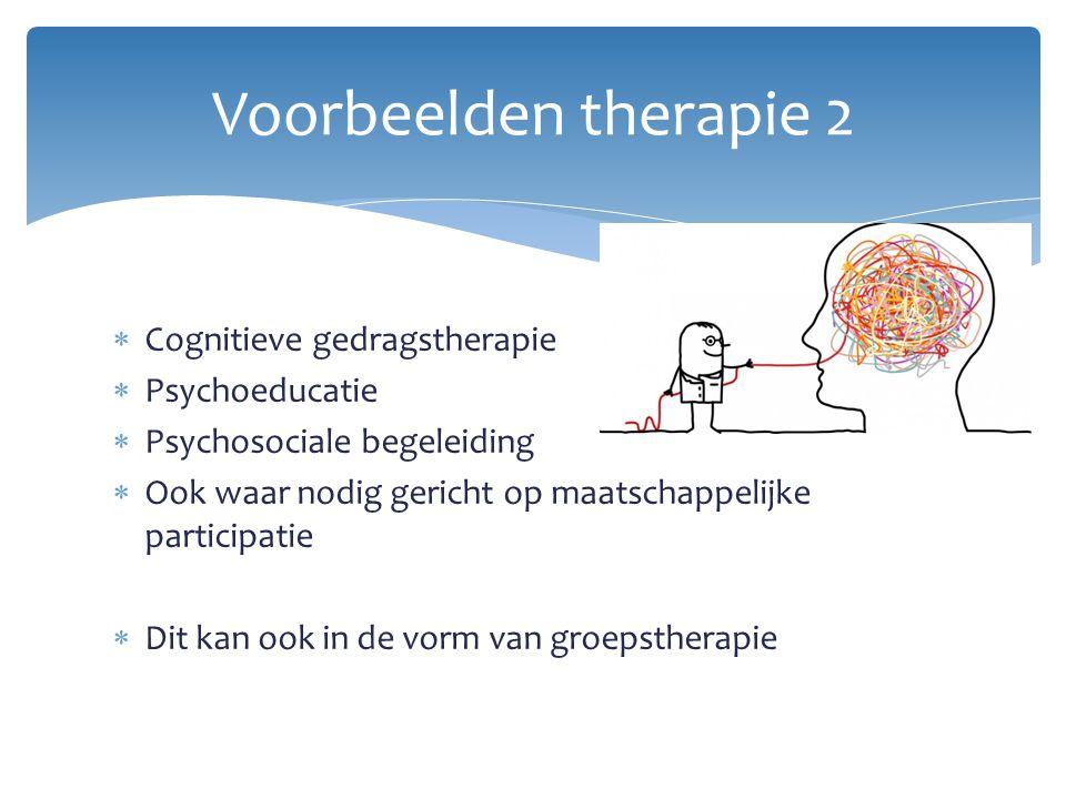 Voorbeelden therapie 2 Cognitieve gedragstherapie Psychoeducatie