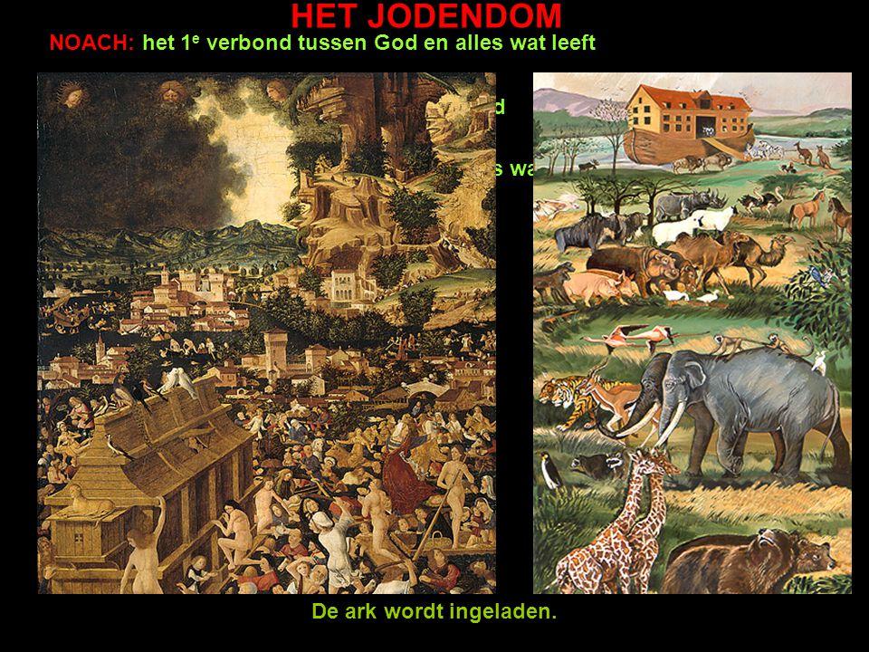 HET JODENDOM NOACH: het 1e verbond tussen God en alles wat leeft