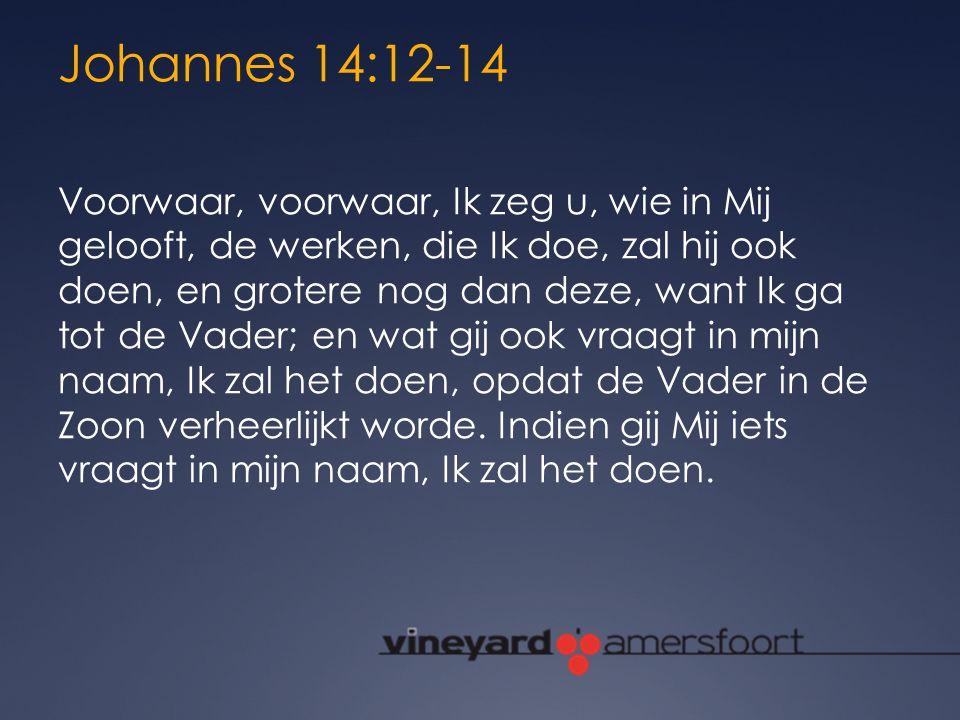 Johannes 14:12-14