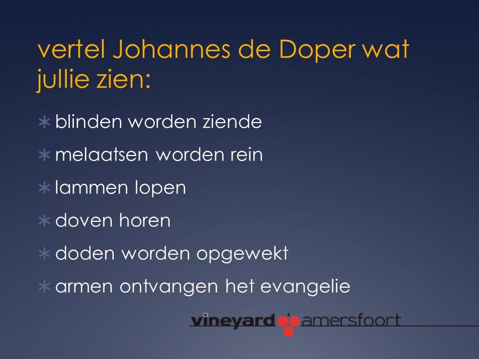 vertel Johannes de Doper wat jullie zien: