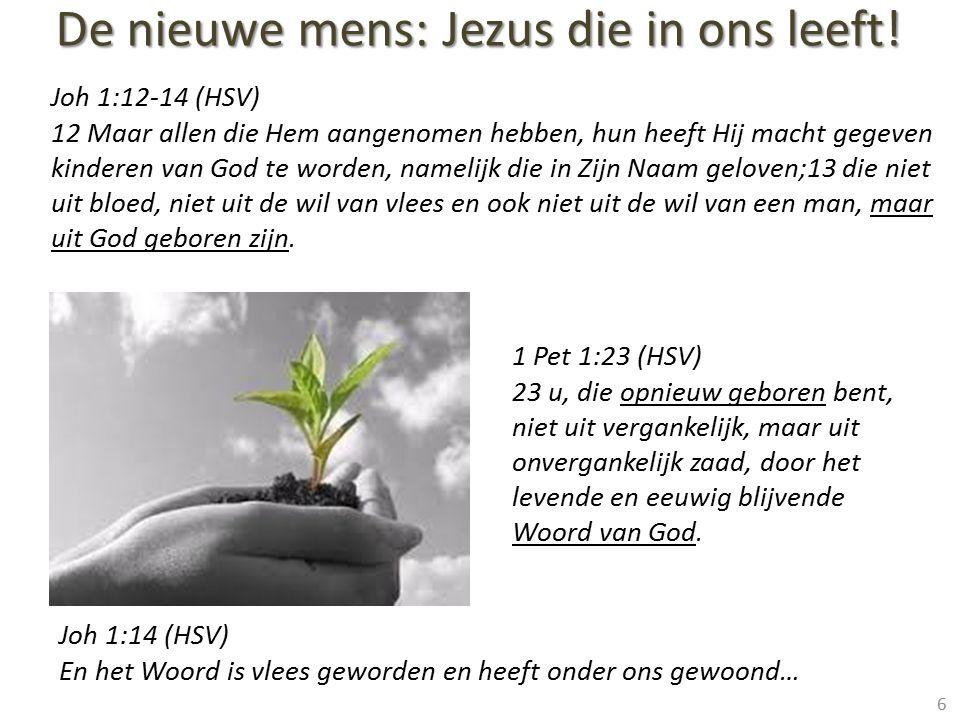 De nieuwe mens: Jezus die in ons leeft!