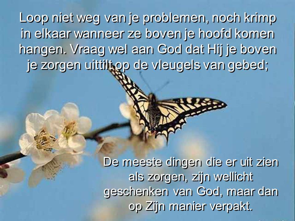 Loop niet weg van je problemen, noch krimp in elkaar wanneer ze boven je hoofd komen hangen. Vraag wel aan God dat Hij je boven je zorgen uittilt op de vleugels van gebed;