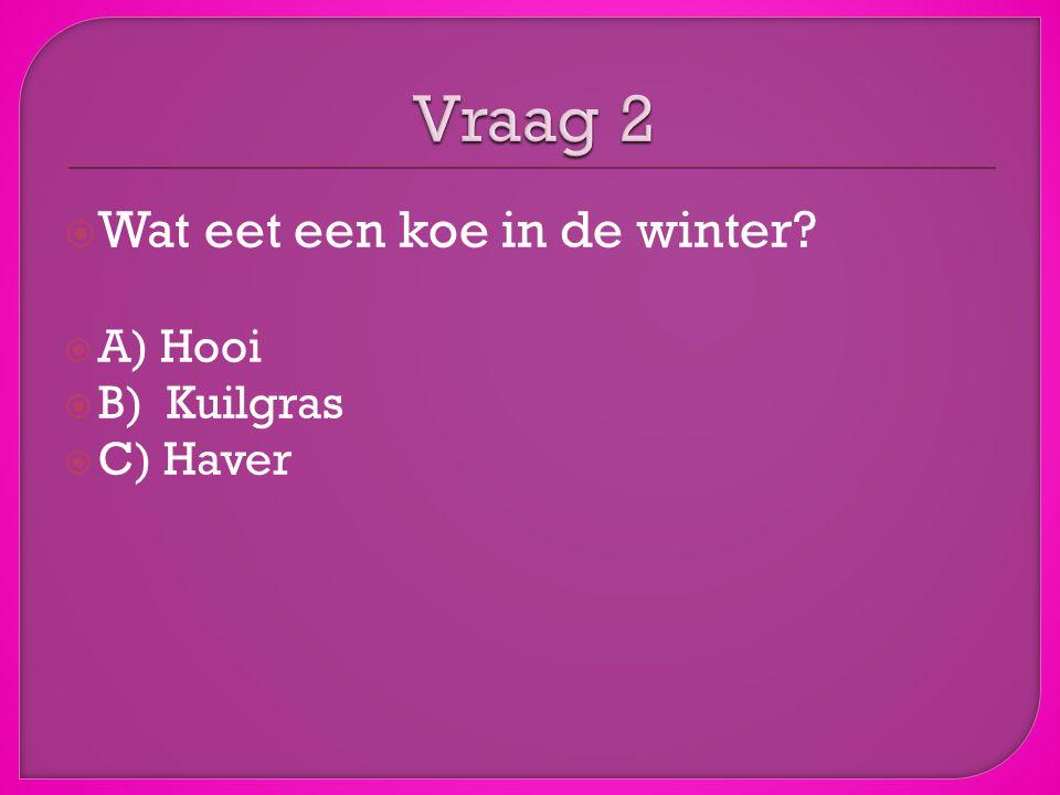 Vraag 2 Wat eet een koe in de winter A) Hooi B) Kuilgras C) Haver