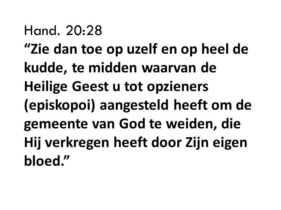 Hand. 20:28