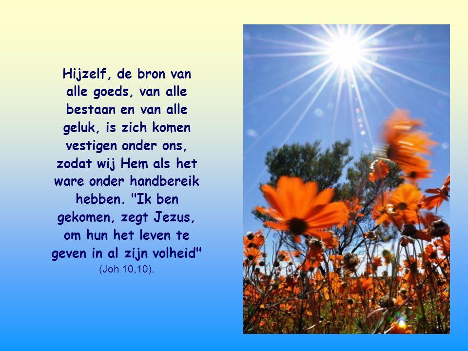 Hijzelf, de bron van alle goeds, van alle bestaan en van alle geluk, is zich komen vestigen onder ons, zodat wij Hem als het ware onder handbereik hebben.