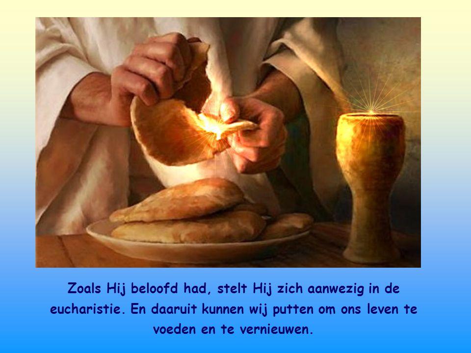 Zoals Hij beloofd had, stelt Hij zich aanwezig in de eucharistie
