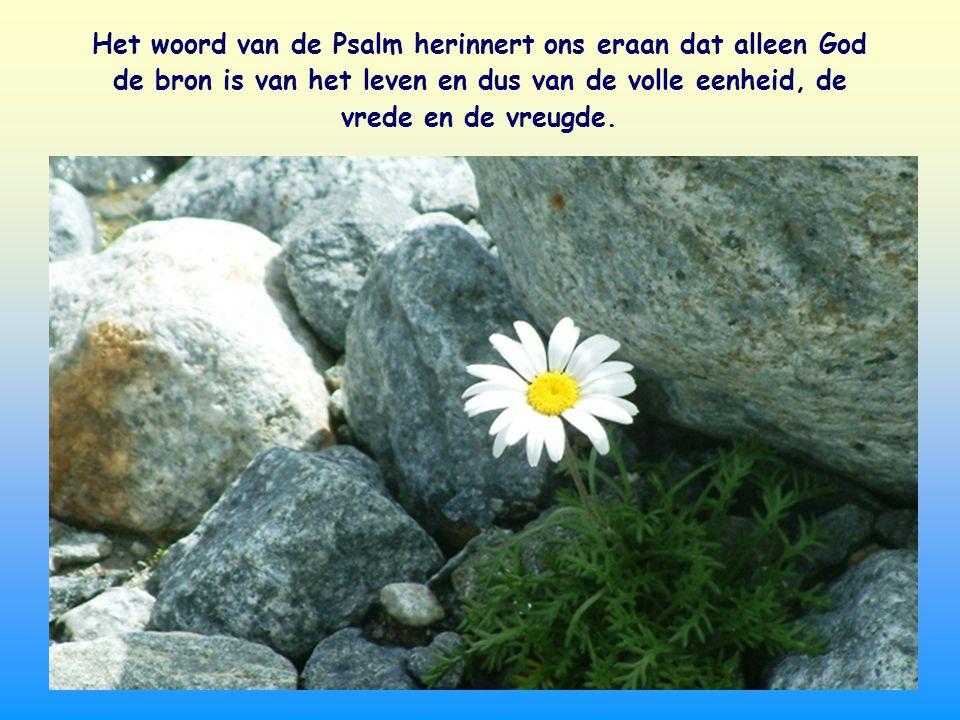 Het woord van de Psalm herinnert ons eraan dat alleen God de bron is van het leven en dus van de volle eenheid, de vrede en de vreugde.