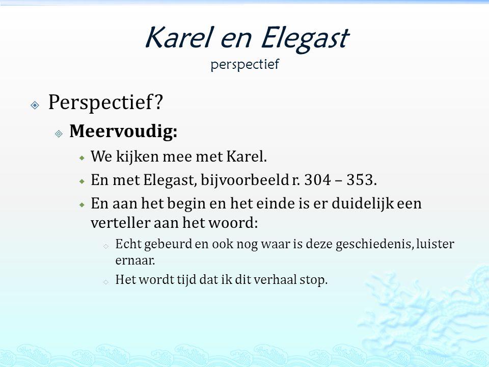 Karel en Elegast perspectief