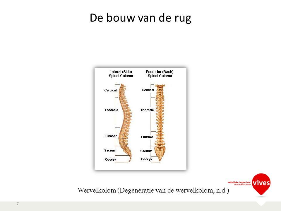 De bouw van de rug Wervelkolom (Degeneratie van de wervelkolom, n.d.)