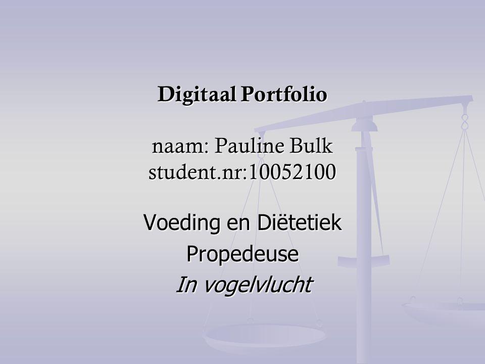 Digitaal Portfolio naam: Pauline Bulk student.nr:10052100