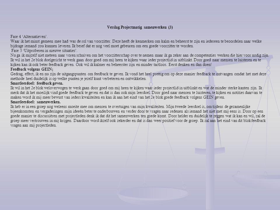 Verslag Projectmatig samenwerken (3)