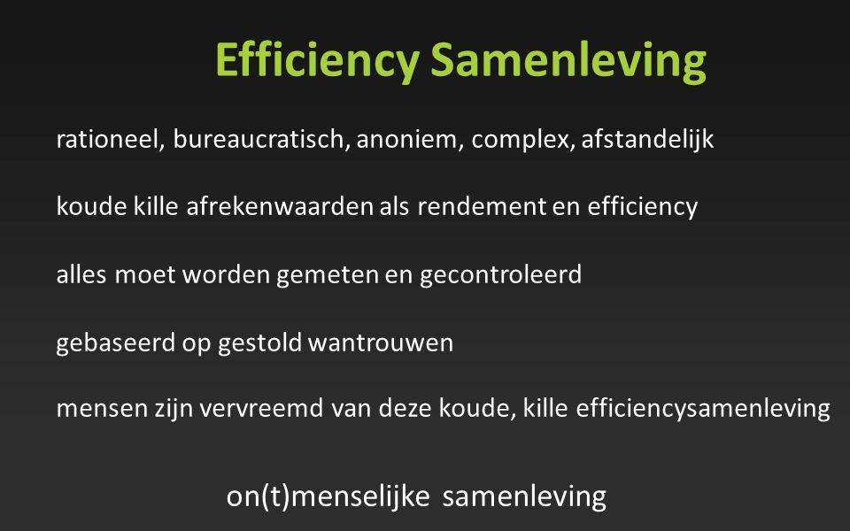 Efficiency Samenleving