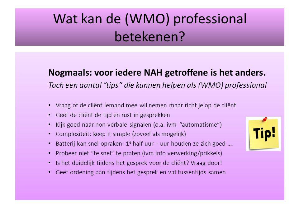 Wat kan de (WMO) professional betekenen