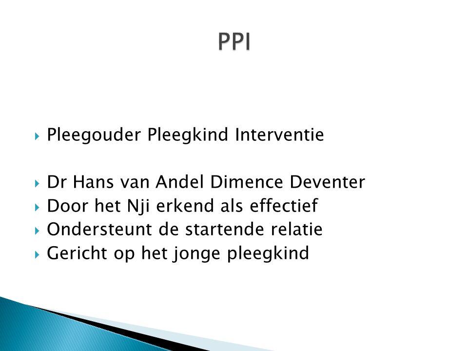 PPI Pleegouder Pleegkind Interventie