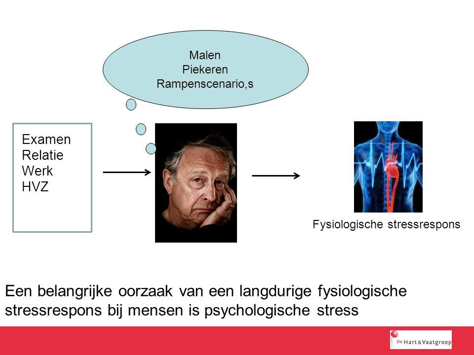 Malen Piekeren. Rampenscenario,s. Examen. Relatie. Werk. HVZ. Fysiologische stressrespons.