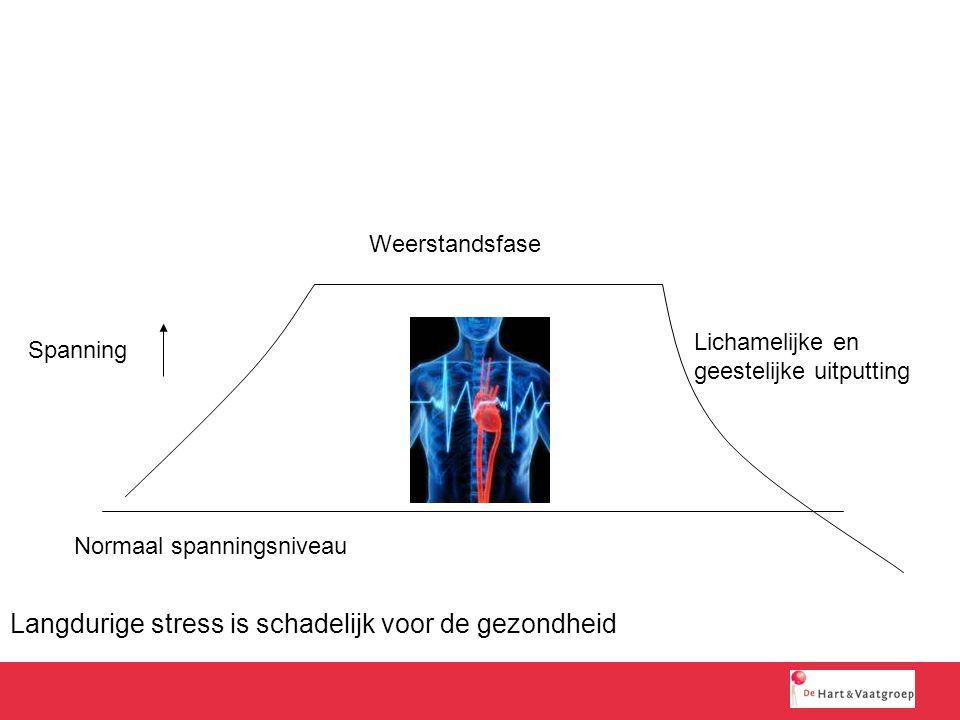 Langdurige stress is schadelijk voor de gezondheid