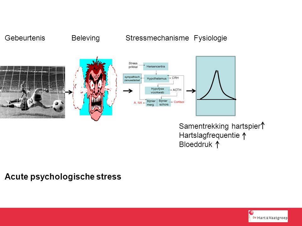 Acute psychologische stress