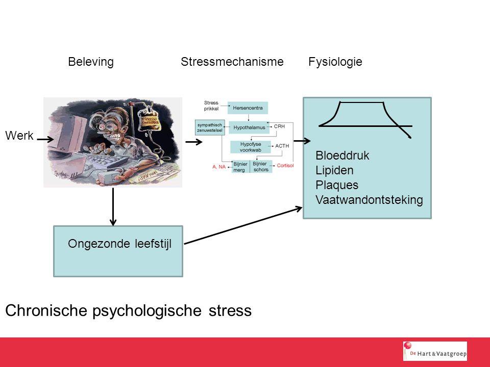 Chronische psychologische stress