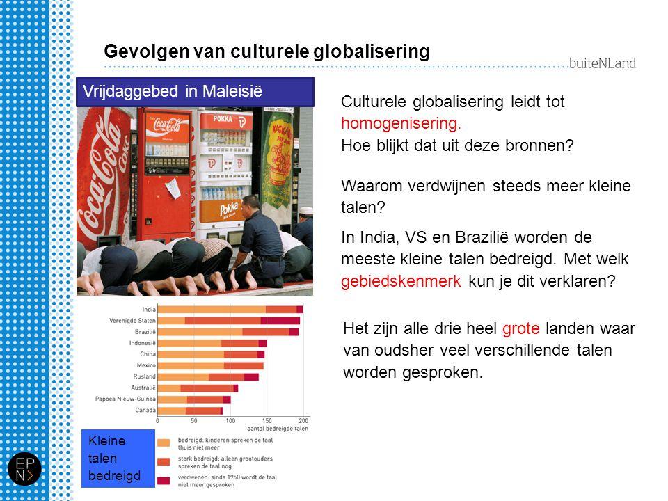 Gevolgen van culturele globalisering