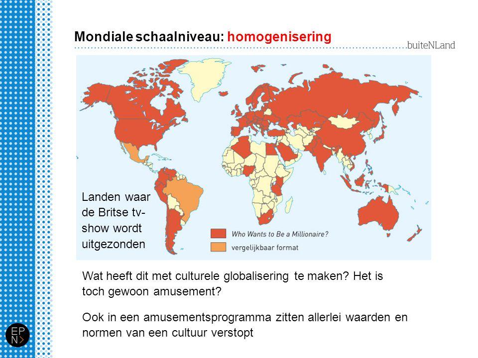 Mondiale schaalniveau: homogenisering