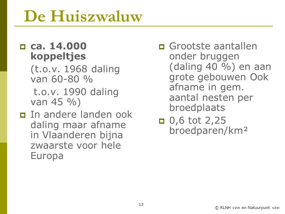 De Huiszwaluw ca. 14.000 koppeltjes (t.o.v. 1968 daling van 60-80 %