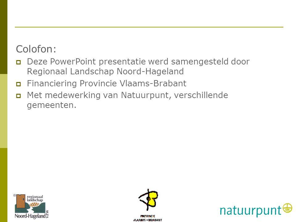 Zwaluwles RLNH vzw Colofon: Deze PowerPoint presentatie werd samengesteld door Regionaal Landschap Noord-Hageland.