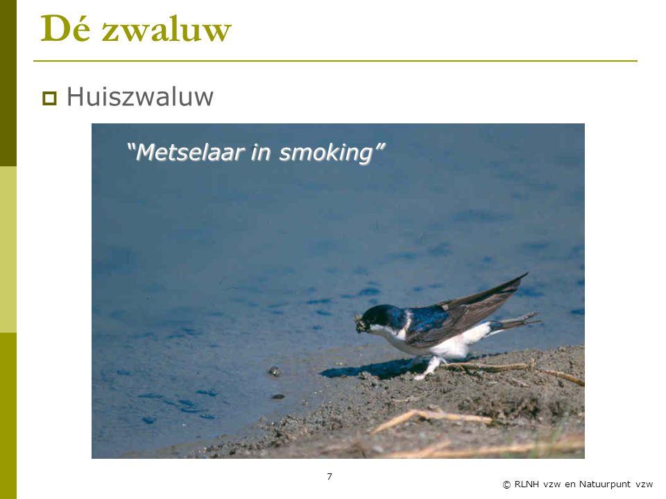 Metselaar in smoking