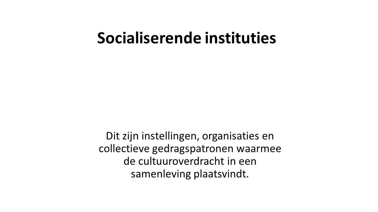 Socialiserende instituties