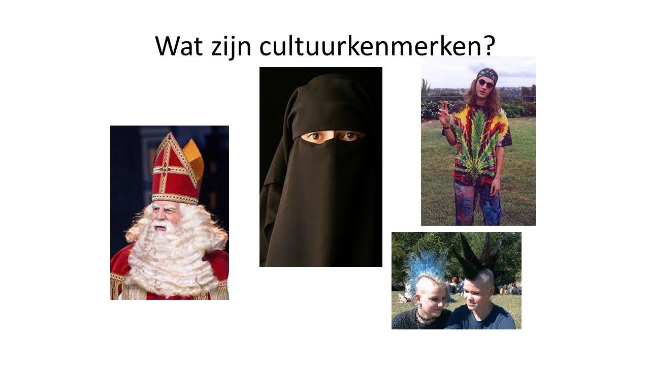 Wat zijn cultuurkenmerken