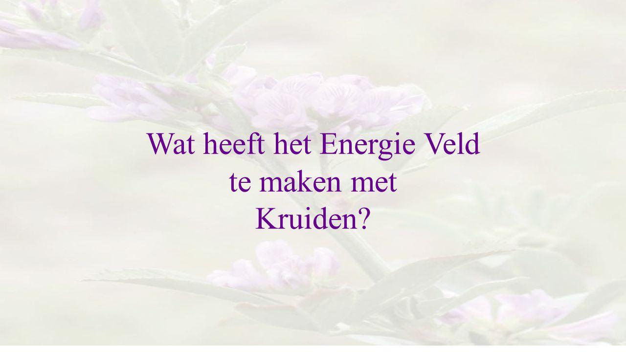 Wat heeft het Energie Veld
