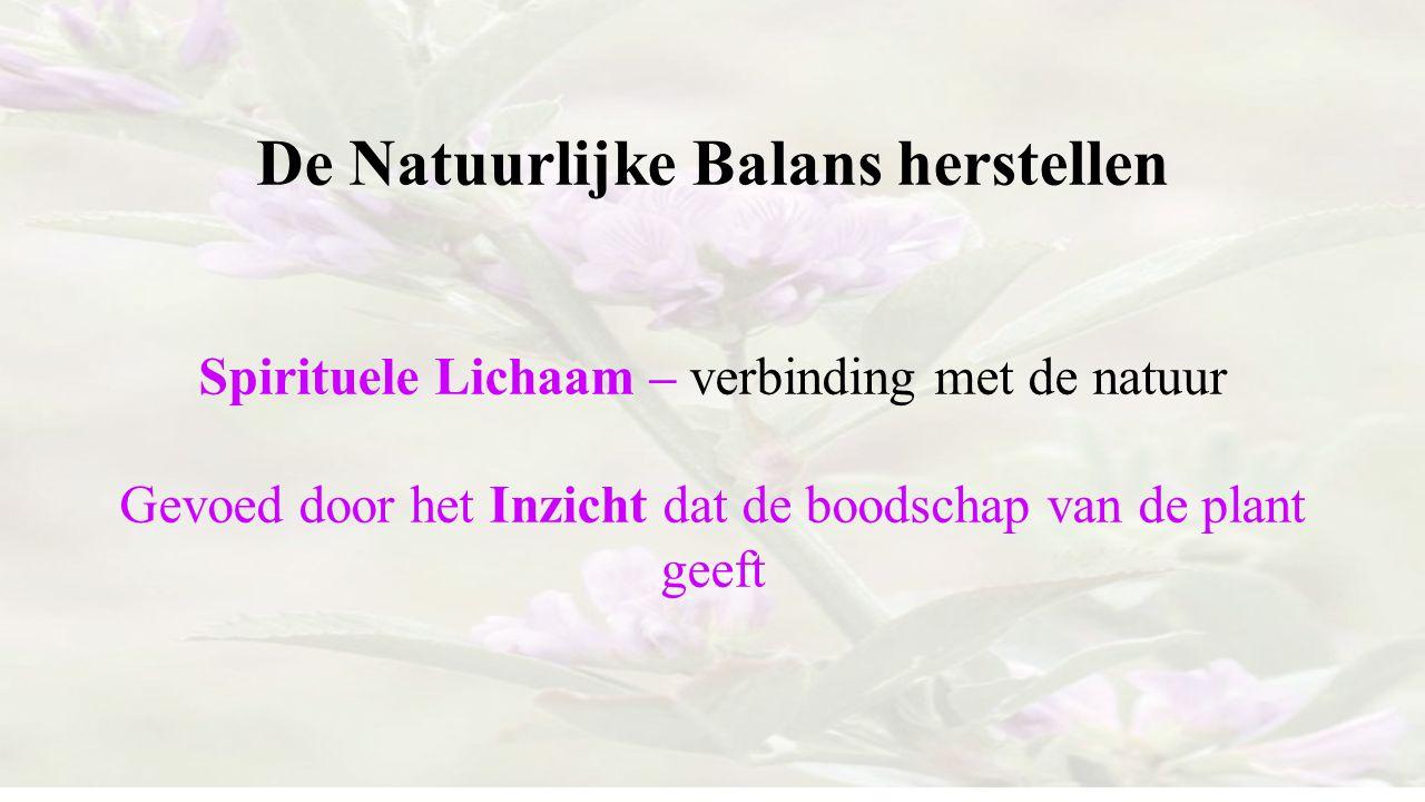 De Natuurlijke Balans herstellen