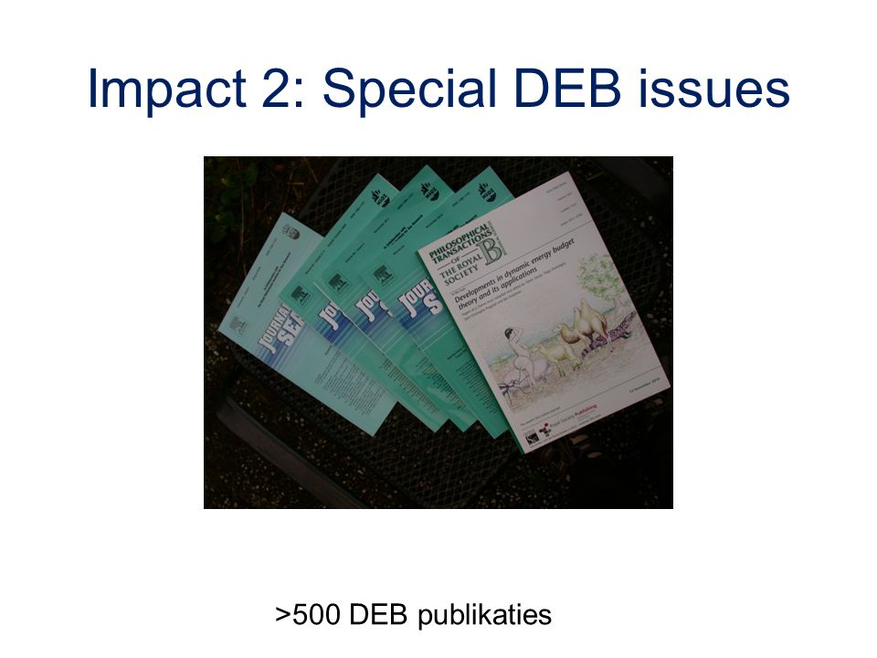 Impact 2: Special DEB issues