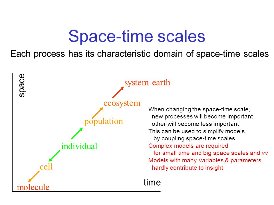 Space-time scales Each process has its characteristic domain of space-time scales. molecule. cell.