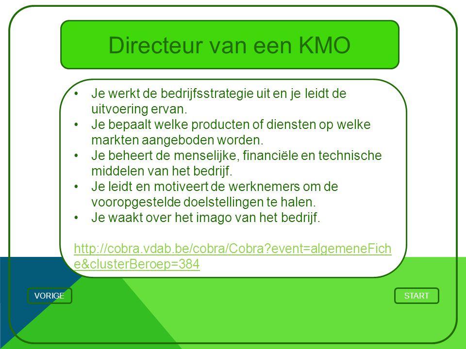 Directeur van een KMO Je werkt de bedrijfsstrategie uit en je leidt de uitvoering ervan.