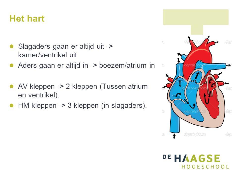 Het hart Slagaders gaan er altijd uit -> kamer/ventrikel uit