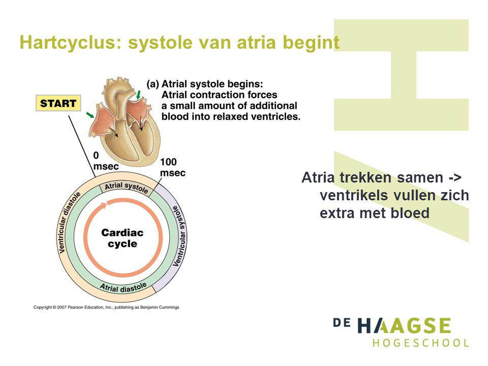 Hartcyclus: systole van atria begint