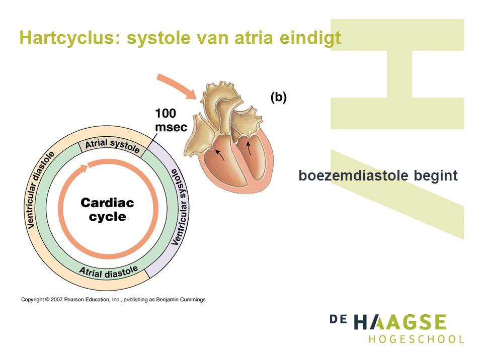 Hartcyclus: systole van atria eindigt