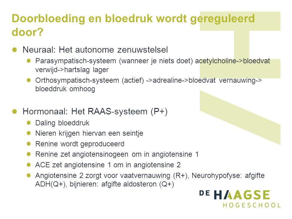 Doorbloeding en bloedruk wordt gereguleerd door