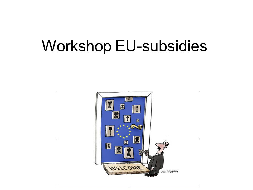 Workshop EU-subsidies