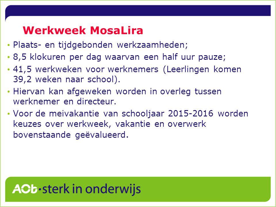 Werkweek MosaLira Plaats- en tijdgebonden werkzaamheden;